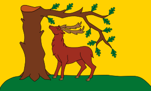 County Flag of Berkshire